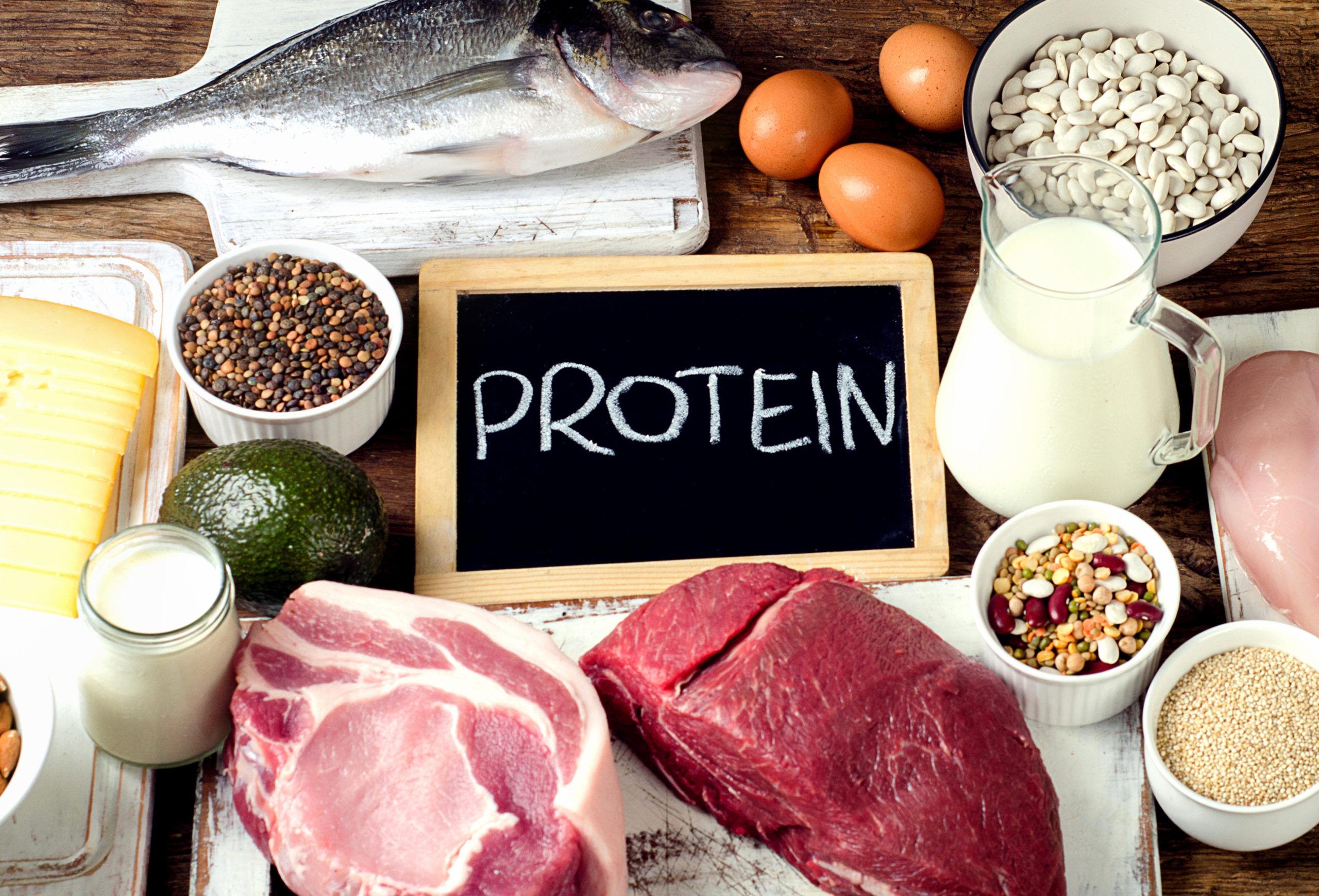 протеин белок
